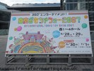 international-tokyo-toy-show-2007-405.jpg