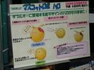 plastic-model-radio-control-show-022.jpg