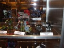 botcon-2007-hasbro-display-105.jpg