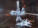 botcon-2007-hasbro-display-172.jpg