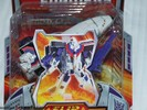 botcon-2007-our-purchases-033.jpg