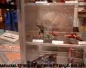 otfcc-2003-017.jpg