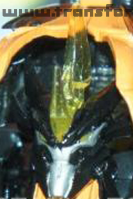 Transformers Prime Beast Hunters Predaking Robot face image