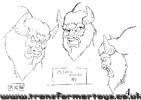 bighorn-01.jpg