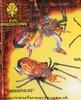 bw-tarantulas-orange.jpg