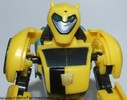 deluxe-bumblebee-002.jpg