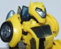 deluxe-bumblebee-012.jpg