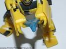 deluxe-bumblebee-019.jpg