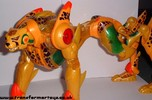 supreme-cheetor-010.jpg
