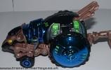 blue-tm-rattrap-016.jpg