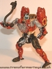 tm-red-cheetor-007.jpg