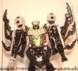 tm-silver-tarantulas-002.jpg