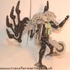 tm-silver-tarantulas-004.jpg