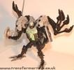 tm-silver-tarantulas-010.jpg