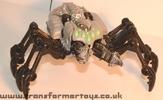 tm-silver-tarantulas-011.jpg