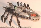 tm-silver-tarantulas-017.jpg