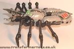 tm-silver-tarantulas-018.jpg