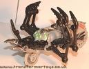 tm-silver-tarantulas-021.jpg