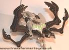 tm-silver-tarantulas-022.jpg