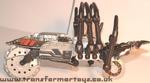 tm-silver-tarantulas-023.jpg