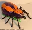 arachnid-012.jpg