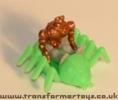 tarantulas-001.jpg