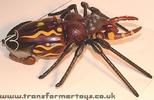 tarantulas-015.jpg