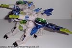 tigerhawk-001.jpg