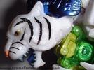 tigerhawk-004.jpg
