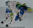 tigerhawk-017.jpg