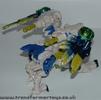 tigerhawk-021.jpg