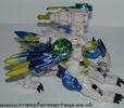 tigerhawk-022.jpg