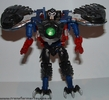 black-prowl-005.jpg