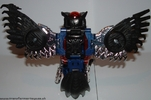 black-prowl-013.jpg