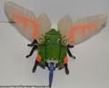 cicadacon-011.jpg