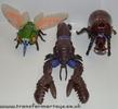 cicadacon-016.jpg