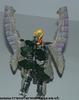 saberback-006.jpg