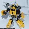 bumblebee-004.jpg