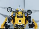 bumblebee-025.jpg