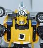 bumblebee-026.jpg