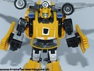 bumblebee-027.jpg