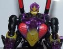 buzzclaw-001.jpg