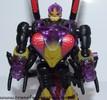 buzzclaw-002.jpg