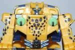 axalon-cheetor-024.jpg
