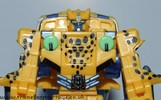 axalon-cheetor-025.jpg