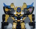 goldbug-016.jpg