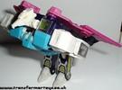 wingspan-009.jpg