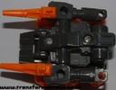scorponok-055.jpg