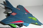 falcon-003.jpg