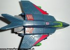 falcon-004.jpg